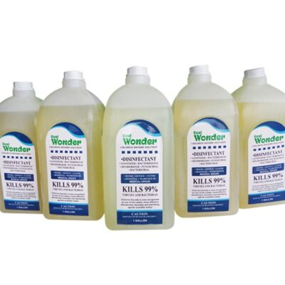 Disinfectant Solution 1 Gallon